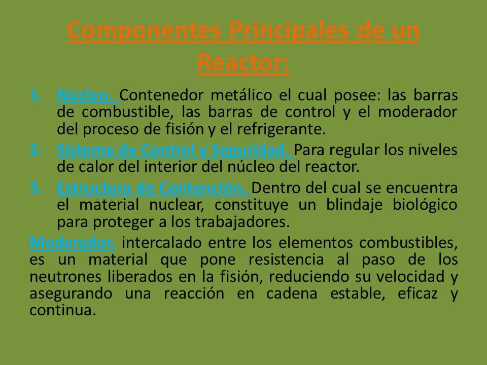 Componentes Principales de un Reactor: