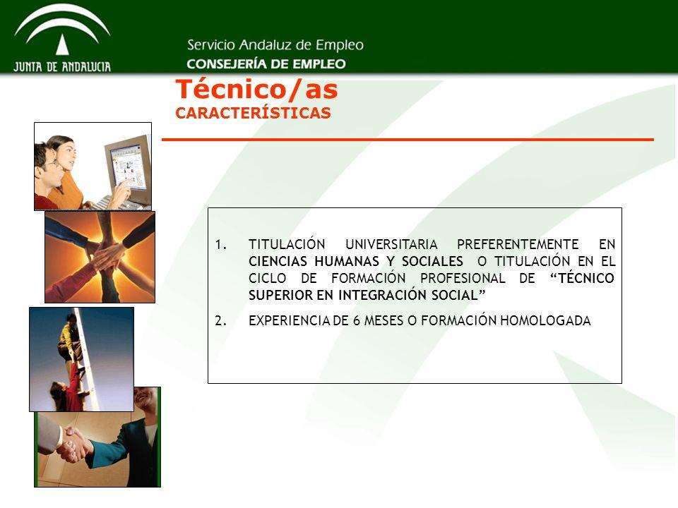 Técnico/as CARACTERÍSTICAS
