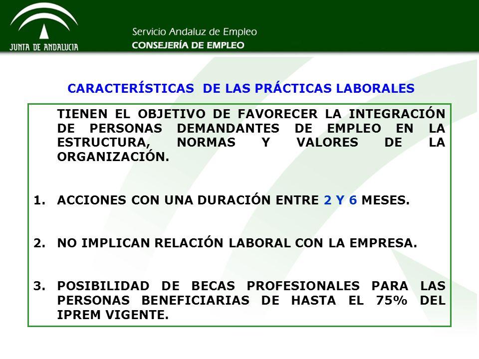 CARACTERÍSTICAS DE LAS PRÁCTICAS LABORALES