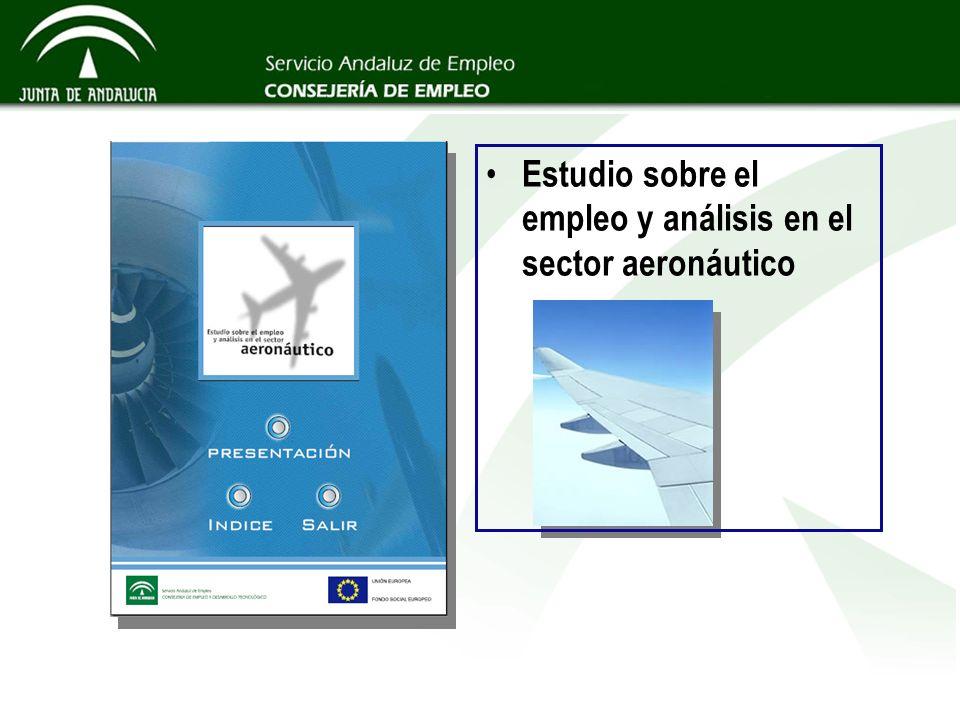 Estudio sobre el empleo y análisis en el sector aeronáutico