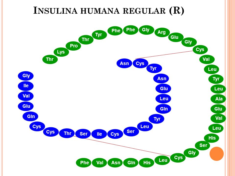 Insulina humana regular (R)