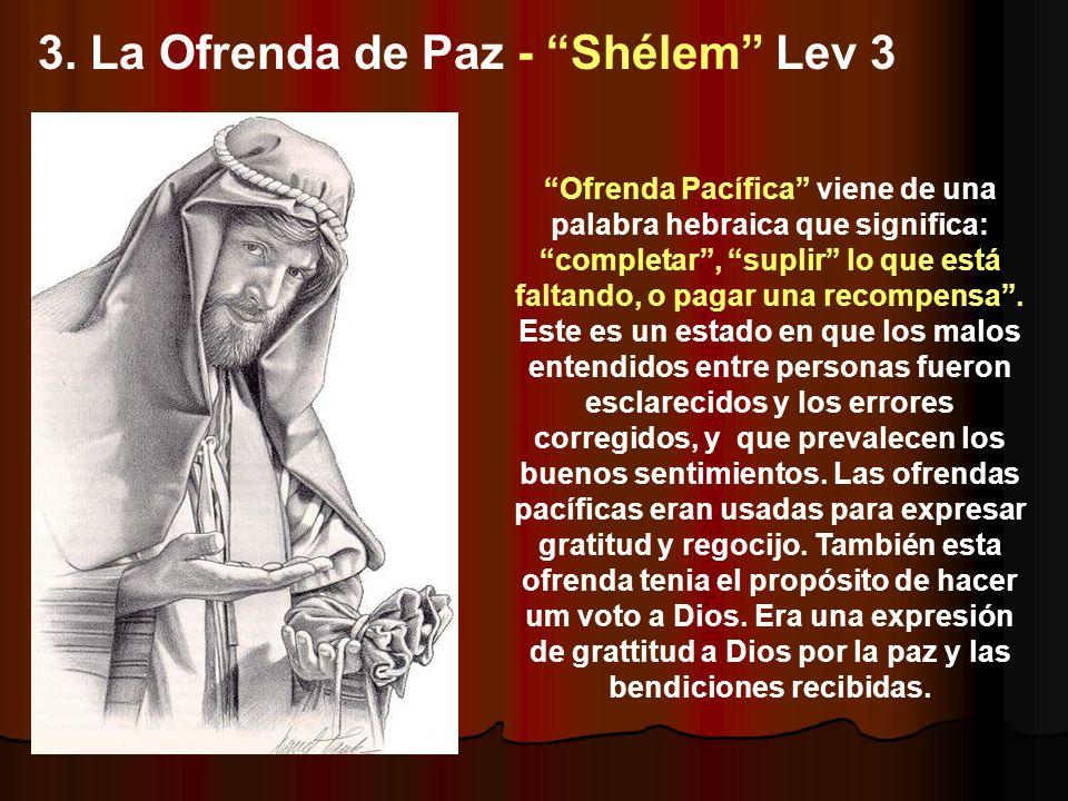 3. La Ofrenda de Paz - Shélem Lev 3