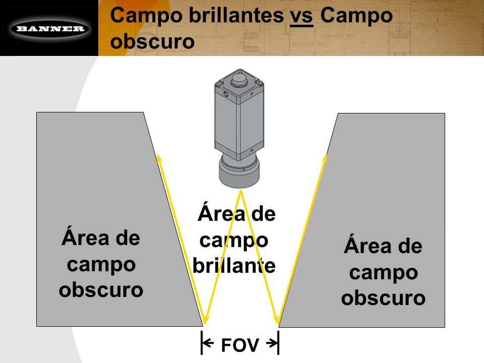 Campo brillantes vs Campo obscuro