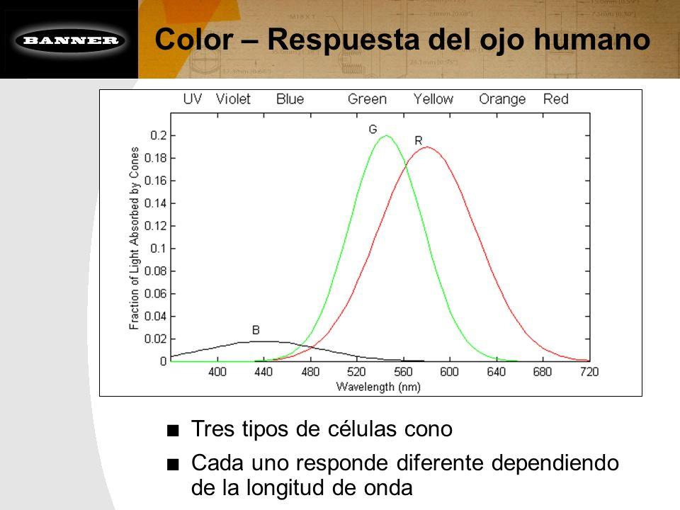 Color – Respuesta del ojo humano