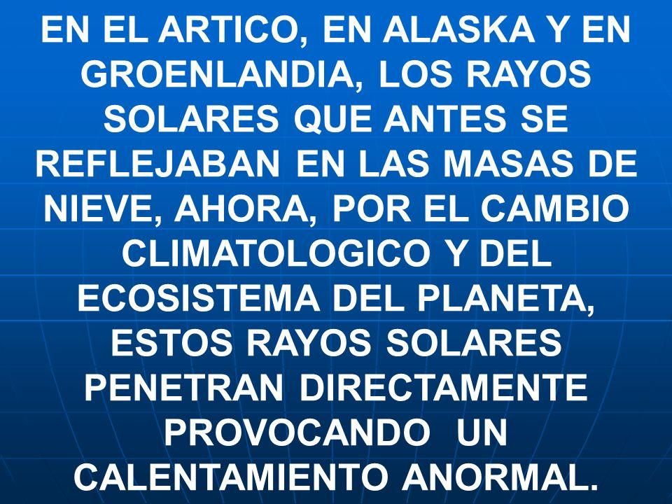 EN EL ARTICO, EN ALASKA Y EN GROENLANDIA, LOS RAYOS SOLARES QUE ANTES SE REFLEJABAN EN LAS MASAS DE NIEVE, AHORA, POR EL CAMBIO CLIMATOLOGICO Y DEL ECOSISTEMA DEL PLANETA, ESTOS RAYOS SOLARES PENETRAN DIRECTAMENTE PROVOCANDO UN CALENTAMIENTO ANORMAL.
