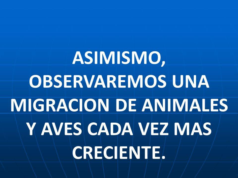 ASIMISMO, OBSERVAREMOS UNA MIGRACION DE ANIMALES Y AVES CADA VEZ MAS CRECIENTE.