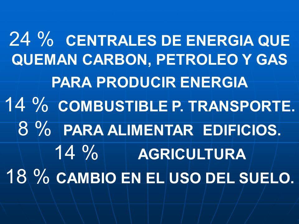 14 % COMBUSTIBLE P. TRANSPORTE. 8 % PARA ALIMENTAR EDIFICIOS.