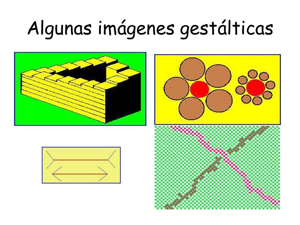 Algunas imágenes gestálticas