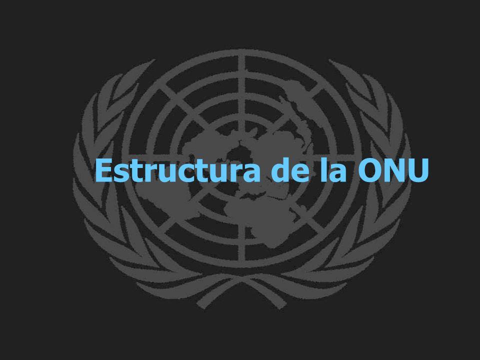 Estructura de la ONU