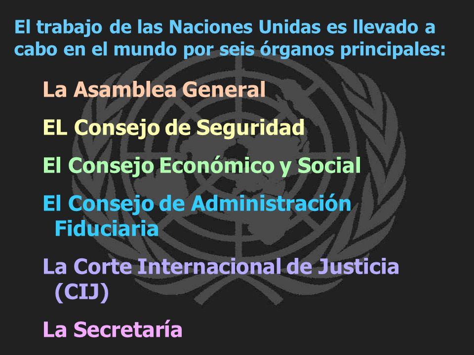 EL Consejo de Seguridad El Consejo Económico y Social