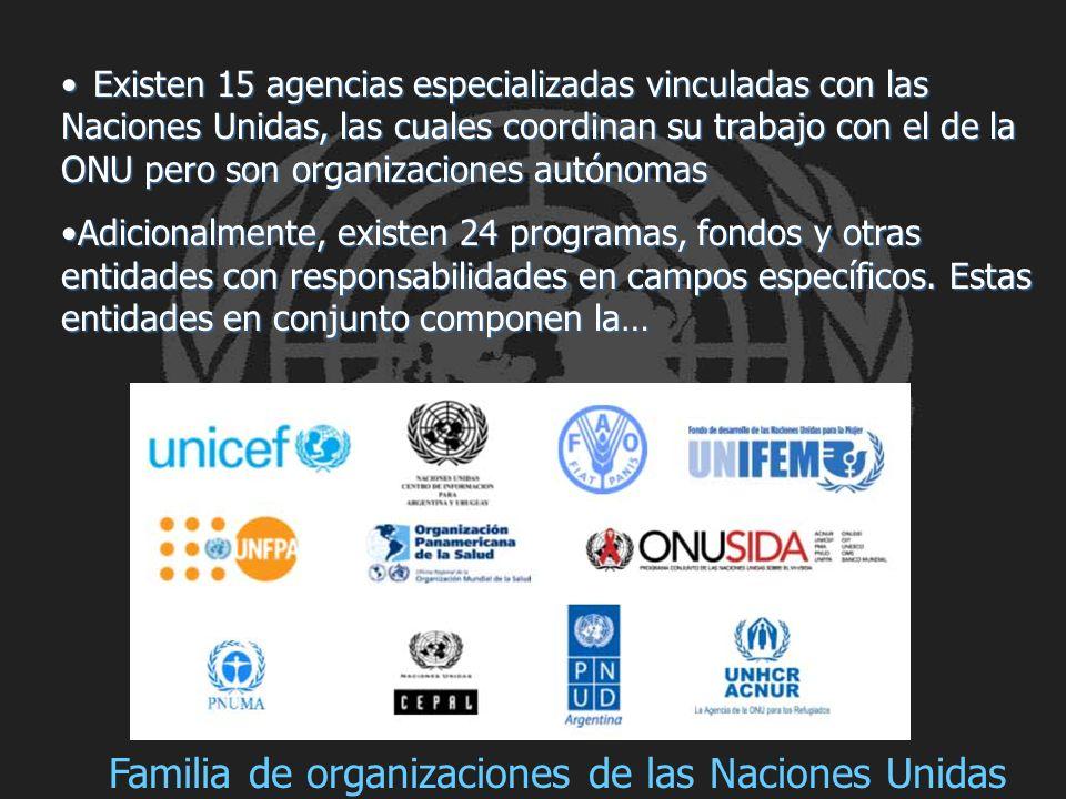 Familia de organizaciones de las Naciones Unidas