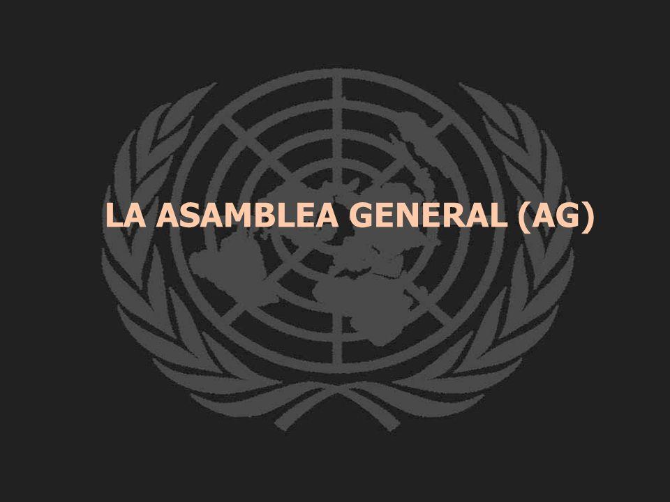 LA ASAMBLEA GENERAL (AG)