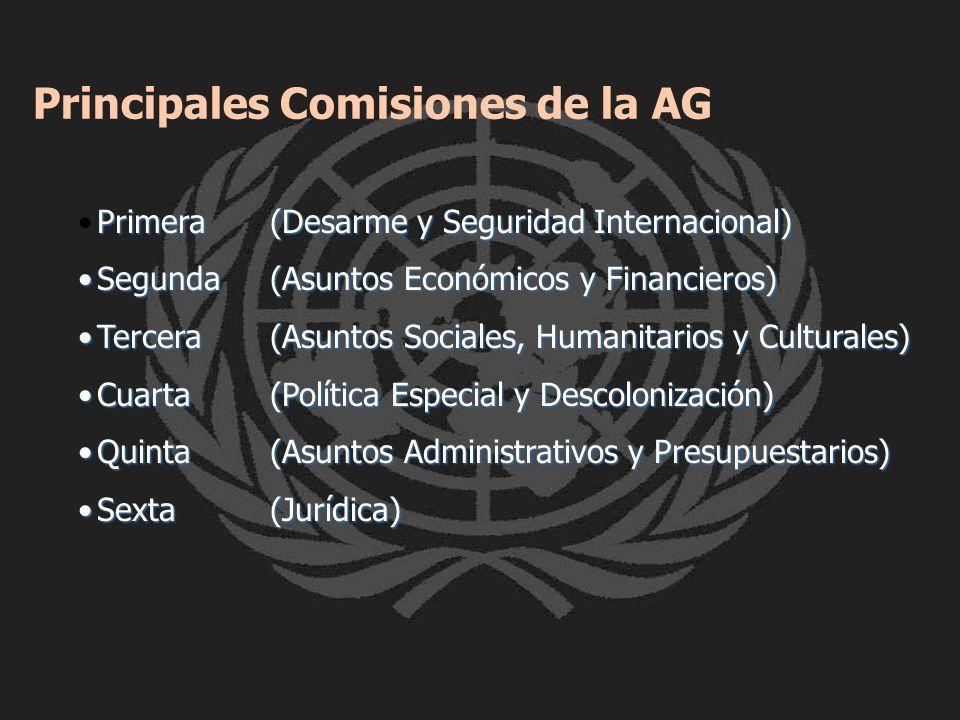 Principales Comisiones de la AG