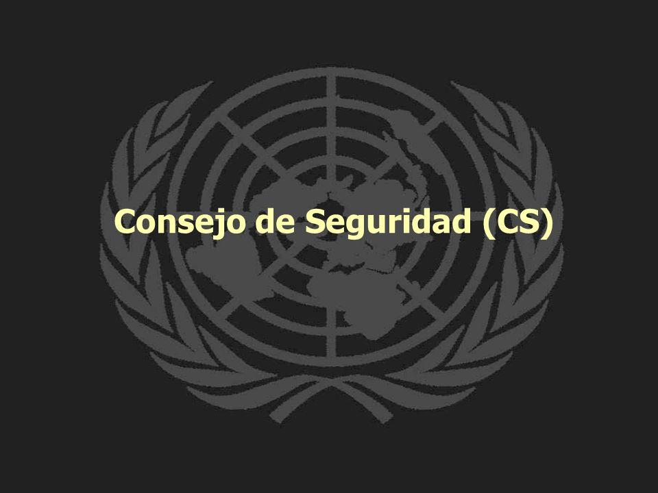 Consejo de Seguridad (CS)