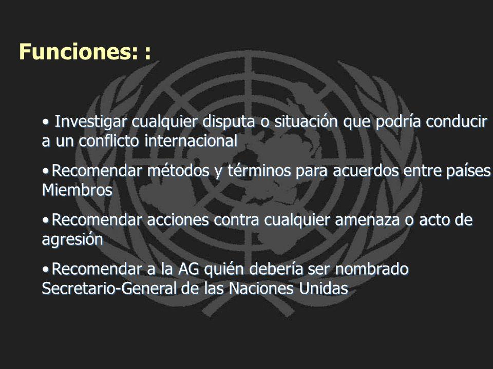Funciones: : Investigar cualquier disputa o situación que podría conducir a un conflicto internacional.
