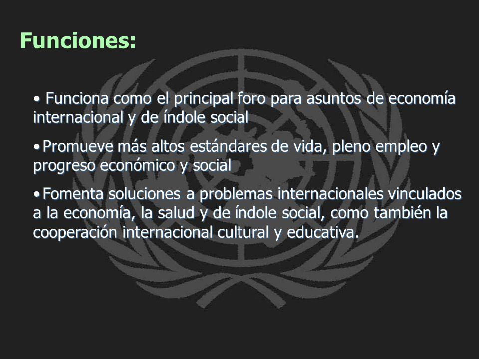 Funciones: Funciona como el principal foro para asuntos de economía internacional y de índole social.