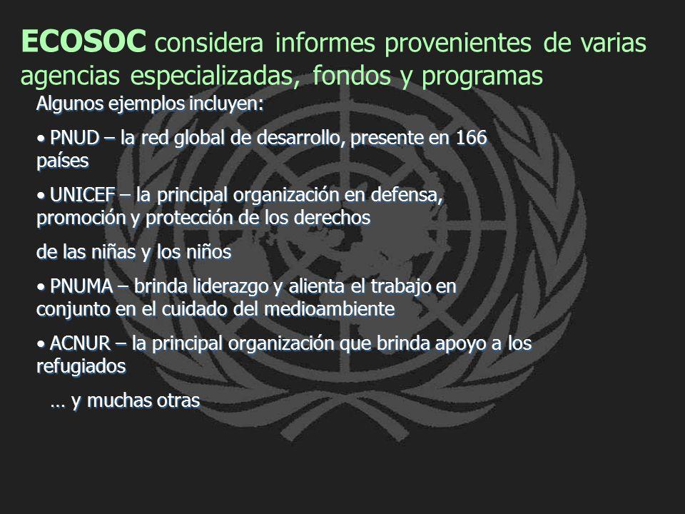 ECOSOC considera informes provenientes de varias agencias especializadas, fondos y programas