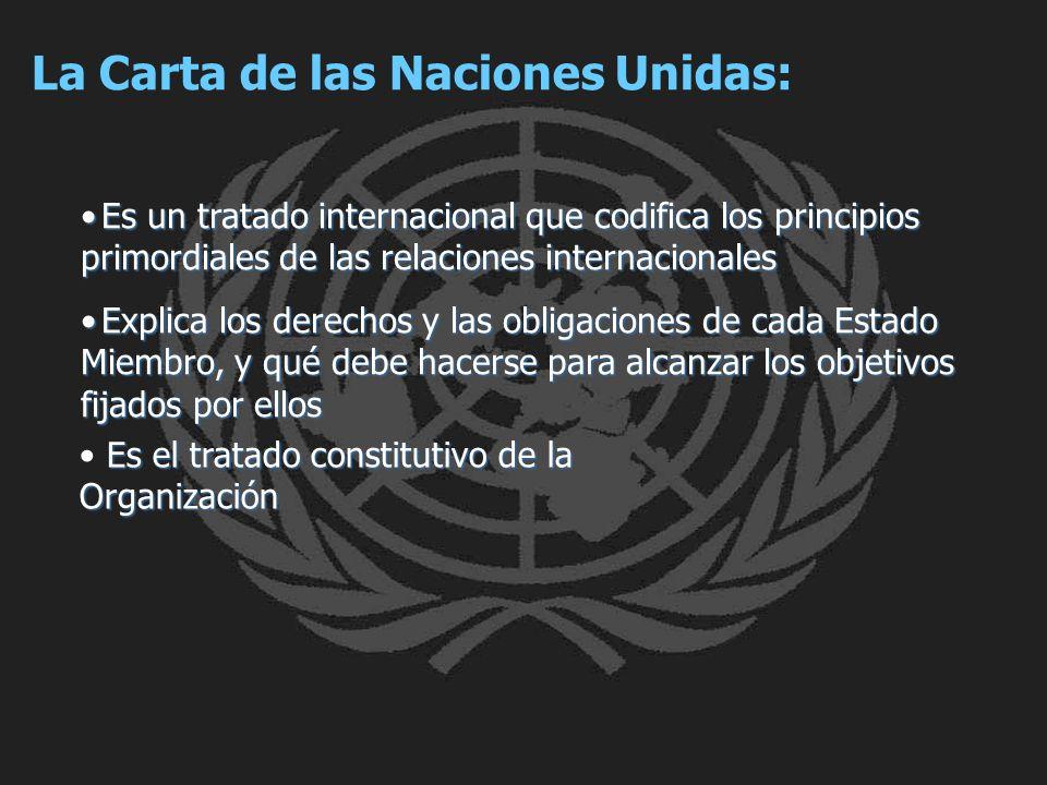 La Carta de las Naciones Unidas: