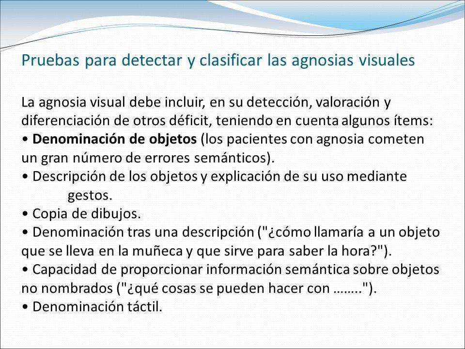 Pruebas para detectar y clasificar las agnosias visuales