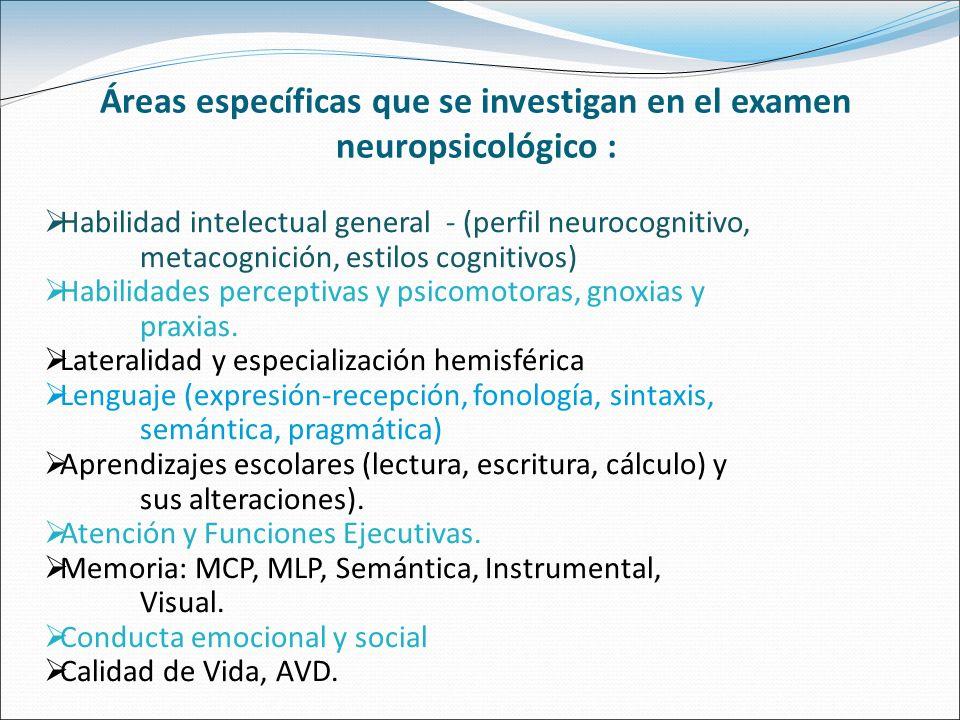 Áreas específicas que se investigan en el examen neuropsicológico :