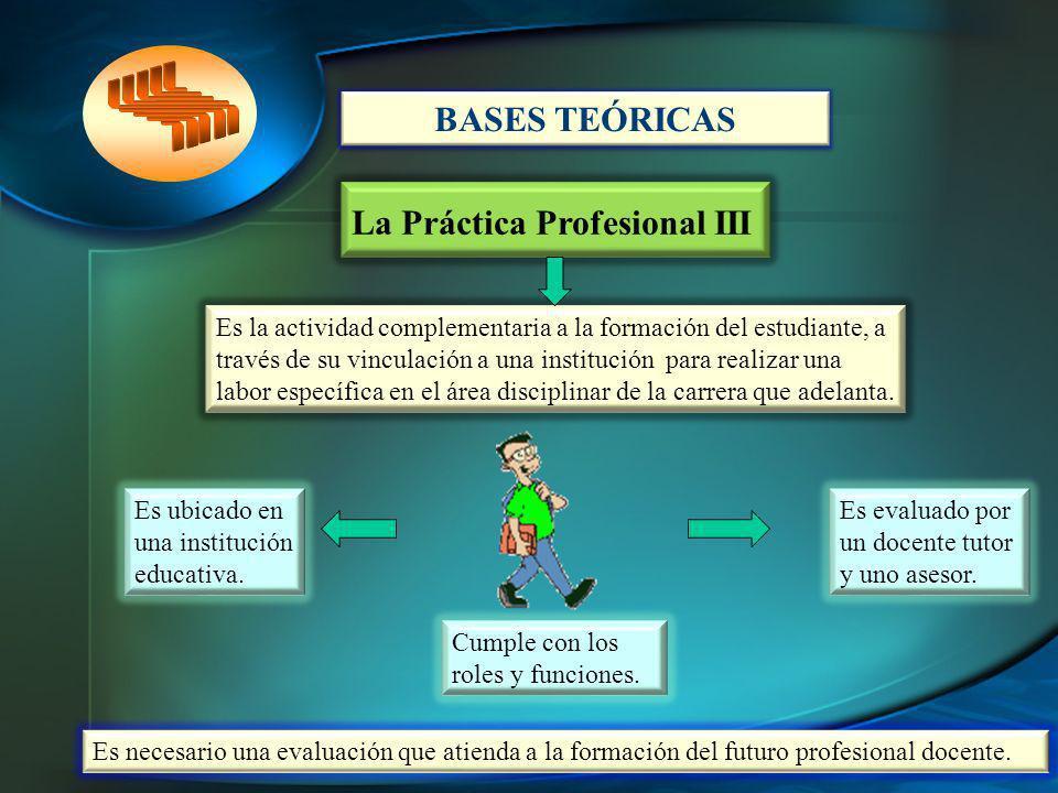 La Práctica Profesional III