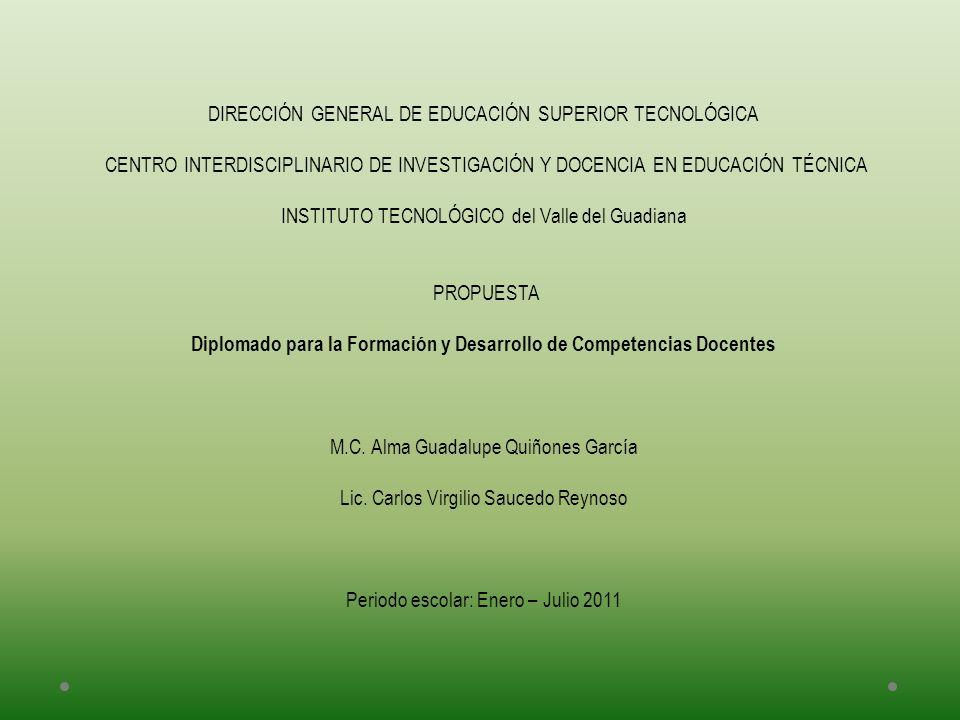 Diplomado para la Formación y Desarrollo de Competencias Docentes
