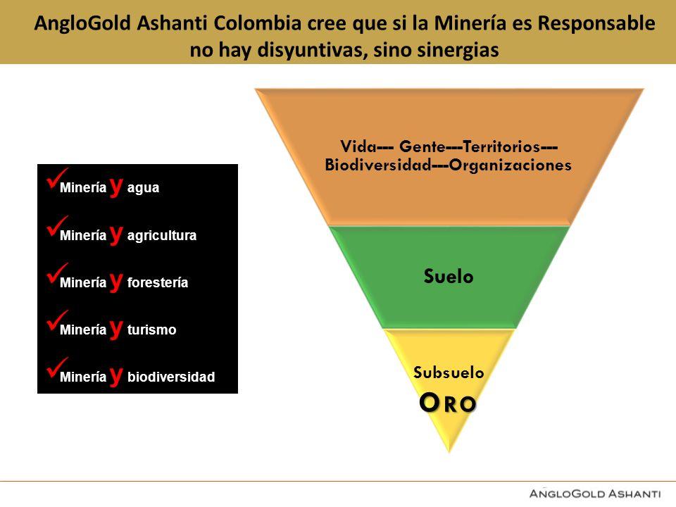 Oro AngloGold Ashanti Colombia cree que si la Minería es Responsable