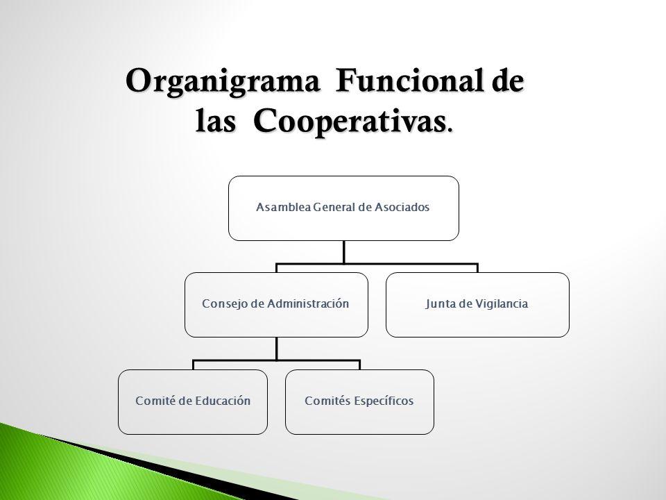 Organigrama Funcional de las Cooperativas.