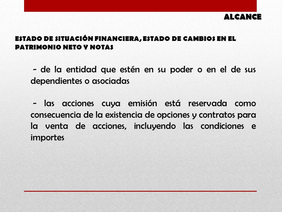 ALCANCE ESTADO DE SITUACIÓN FINANCIERA, ESTADO DE CAMBIOS EN EL PATRIMONIO NETO Y NOTAS.
