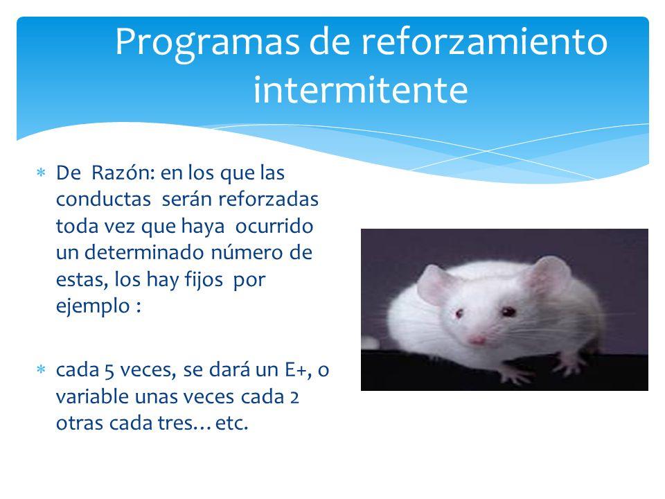 Programas de reforzamiento intermitente
