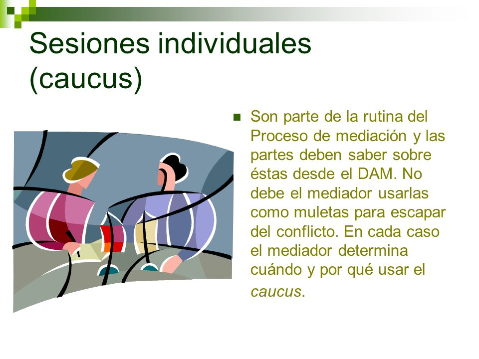 Sesiones individuales (caucus)