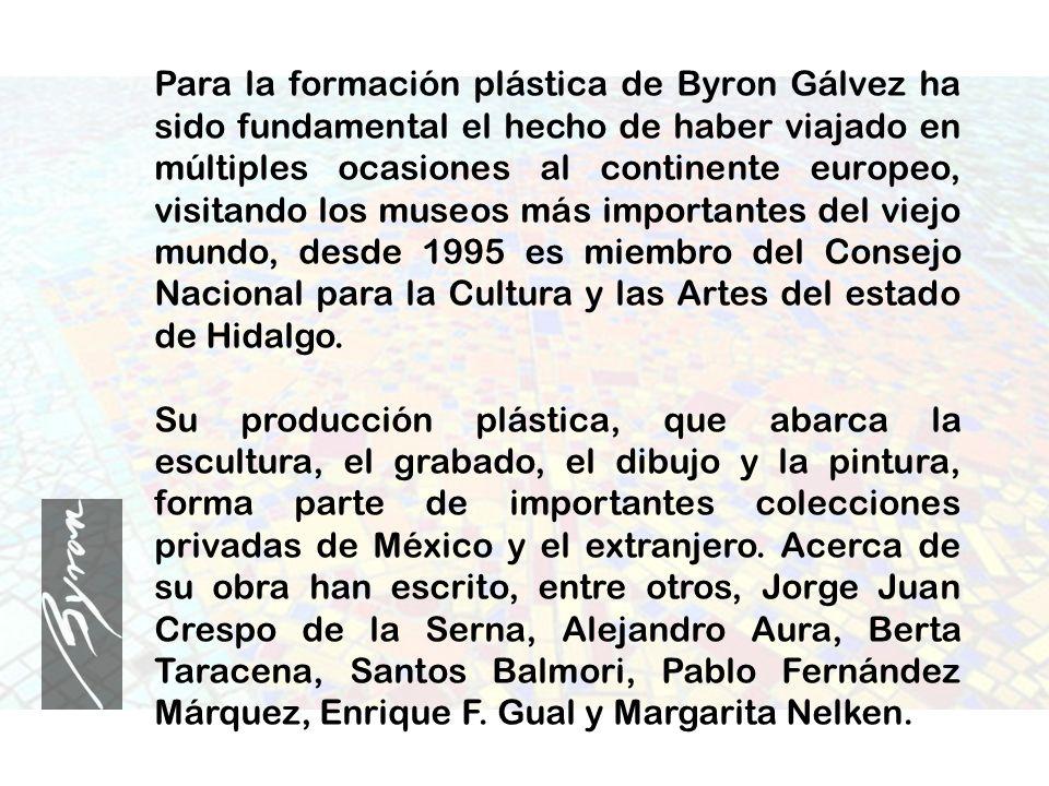 Para la formación plástica de Byron Gálvez ha sido fundamental el hecho de haber viajado en múltiples ocasiones al continente europeo, visitando los museos más importantes del viejo mundo, desde 1995 es miembro del Consejo Nacional para la Cultura y las Artes del estado de Hidalgo.