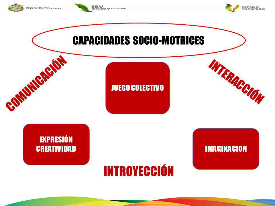 CAPACIDADES SOCIO-MOTRICES