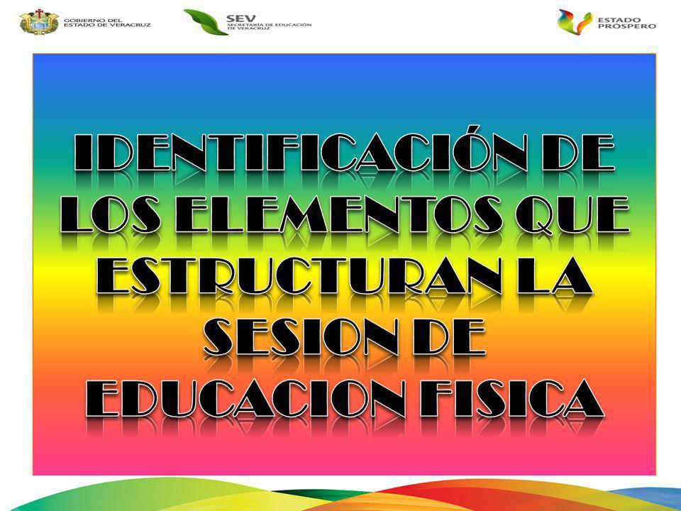 IDENTIFICACIÓN DE LOS ELEMENTOS QUE ESTRUCTURAN LA SESION DE EDUCACION FISICA