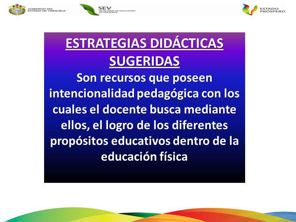ESTRATEGIAS DIDÁCTICAS SUGERIDAS