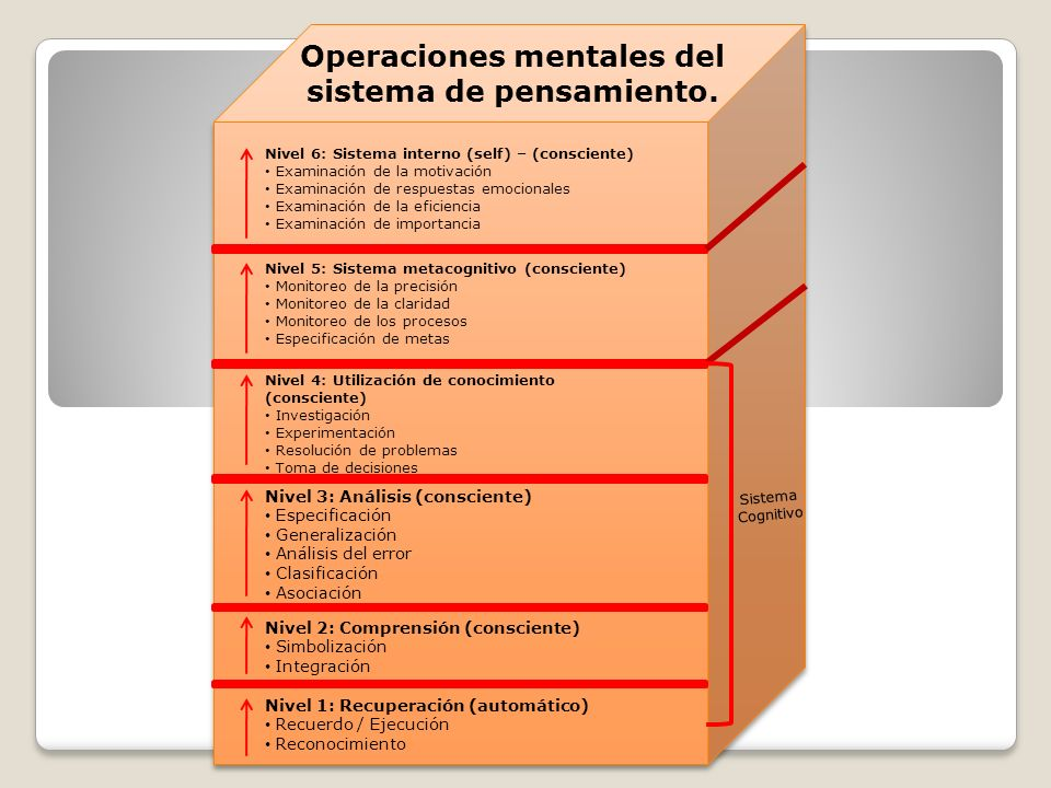 Operaciones mentales del sistema de pensamiento.