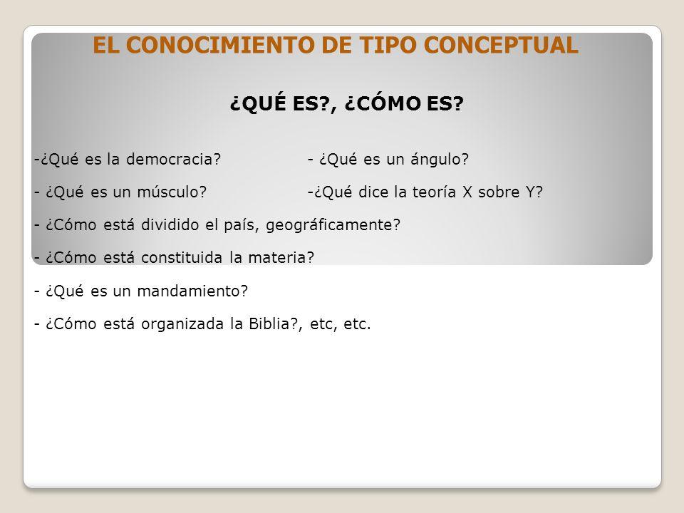 EL CONOCIMIENTO DE TIPO CONCEPTUAL
