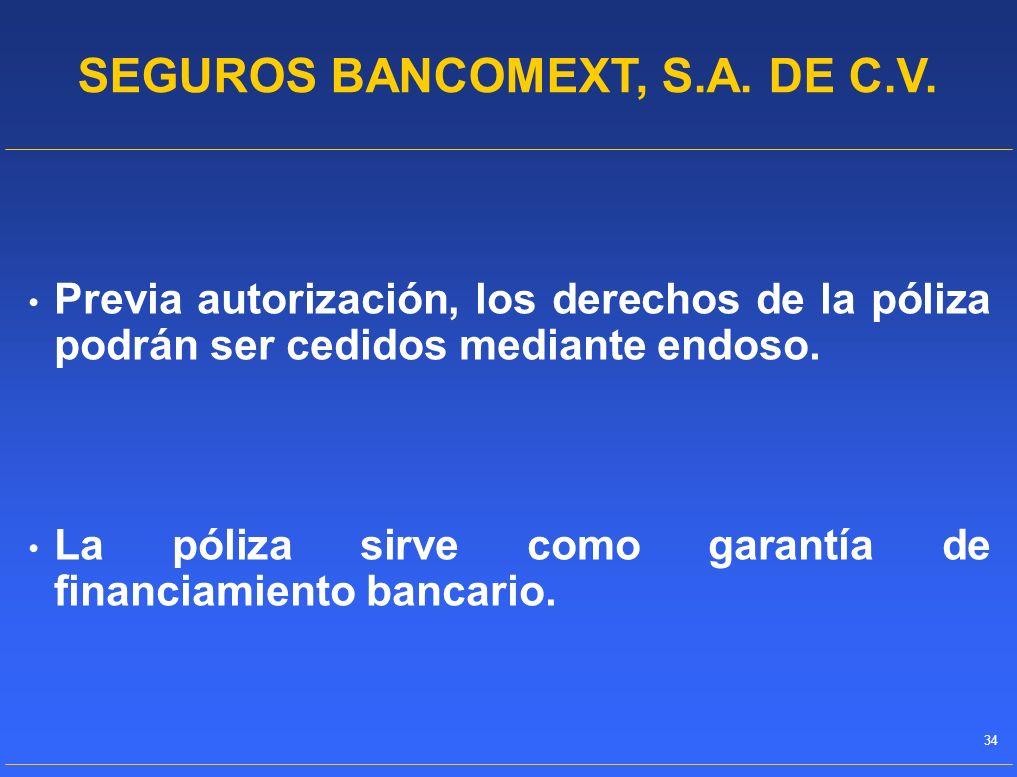 SEGUROS BANCOMEXT, S.A. DE C.V.