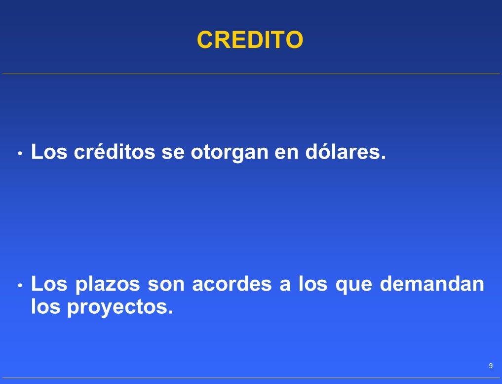 CREDITO Los créditos se otorgan en dólares.