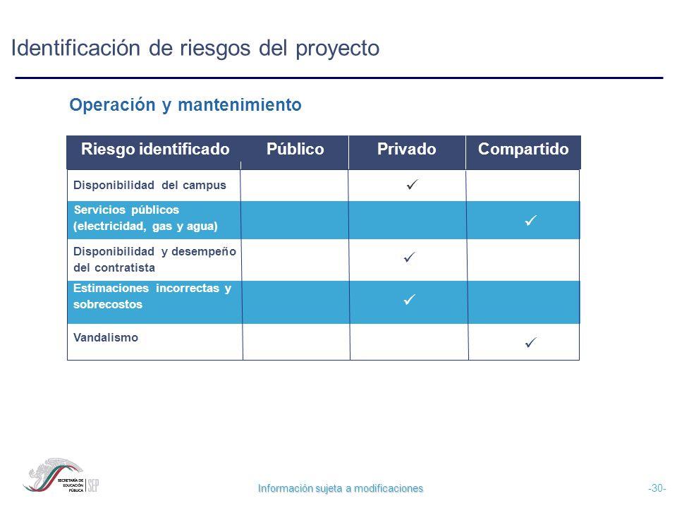 Identificación de riesgos del proyecto