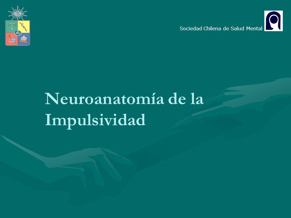 Neuroanatomía de la Impulsividad