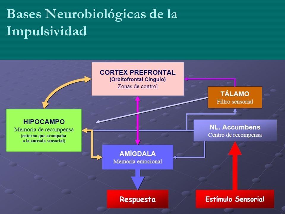 Bases Neurobiológicas de la Impulsividad