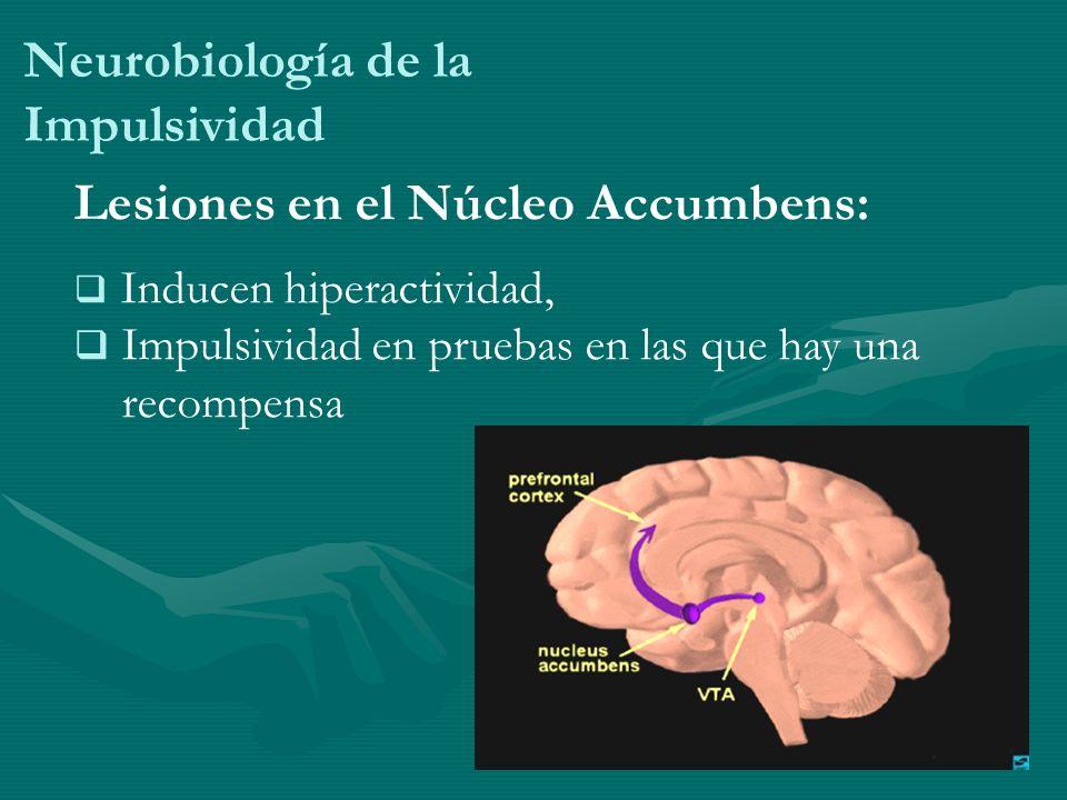 Neurobiología de la Impulsividad