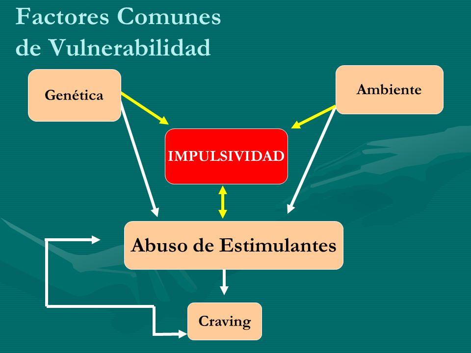 Factores Comunes de Vulnerabilidad