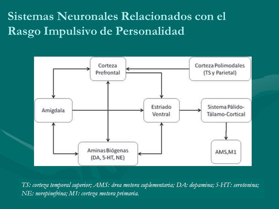 Sistemas Neuronales Relacionados con el Rasgo Impulsivo de Personalidad