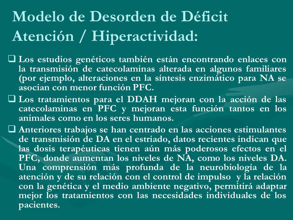 Modelo de Desorden de Déficit Atención / Hiperactividad: