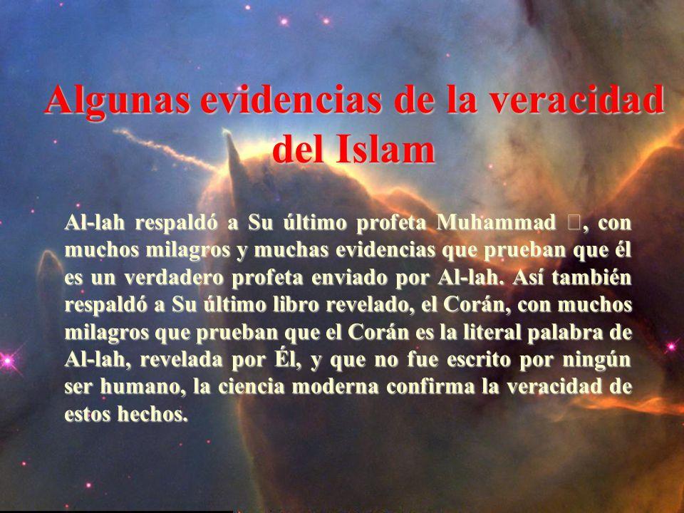 Algunas evidencias de la veracidad del Islam