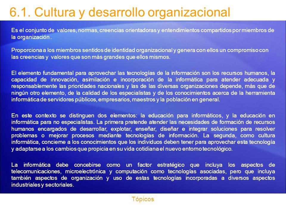 6.1. Cultura y desarrollo organizacional