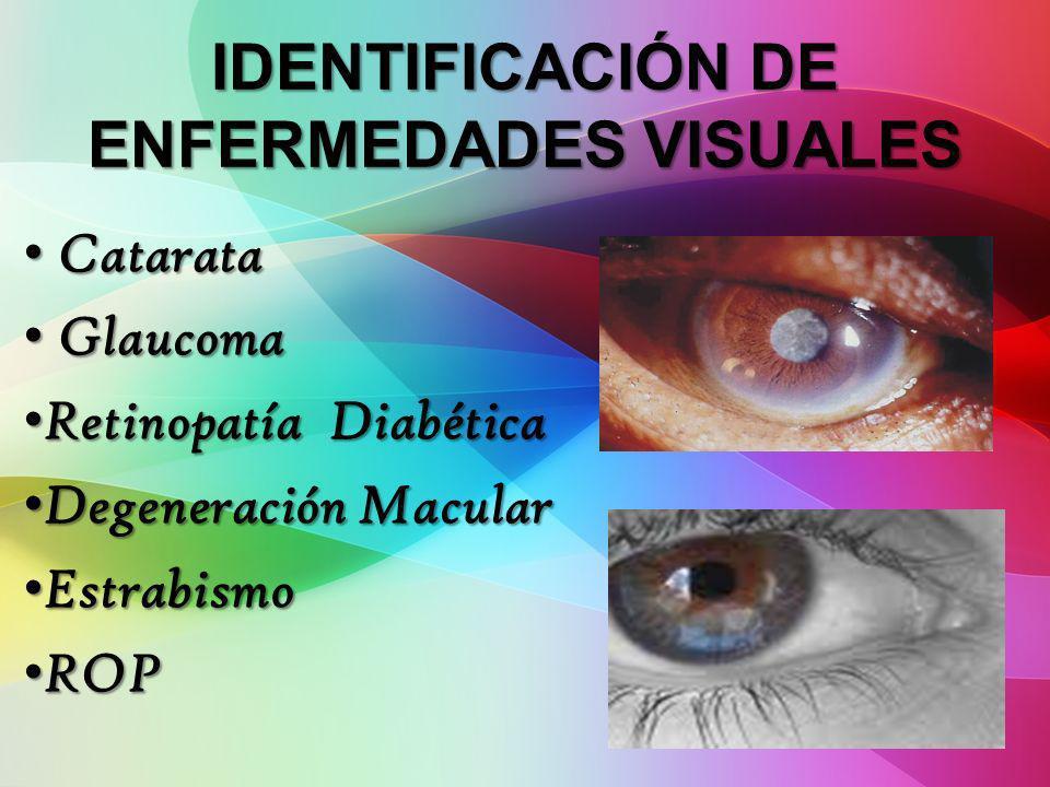 IDENTIFICACIÓN DE ENFERMEDADES VISUALES