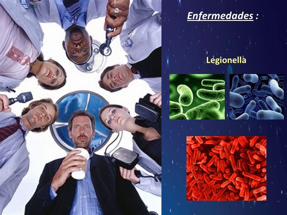 Enfermedades : Legionella
